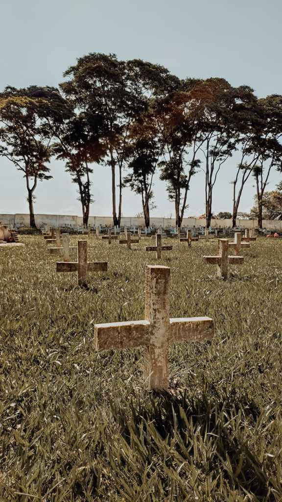 a cemetery of crosses